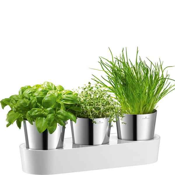 Doniczki Na Zioła Auerhahn Herbs